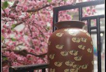 事俗堂︱逃禅-紫陶街