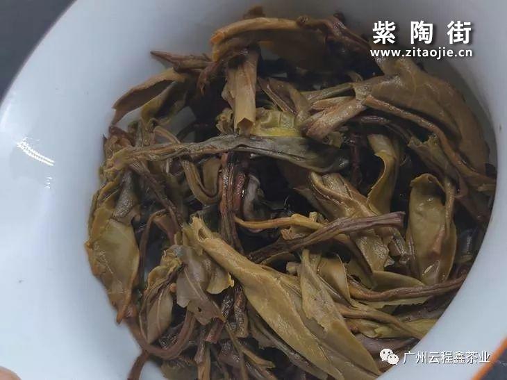 橡筋茶是什么茶?插图2