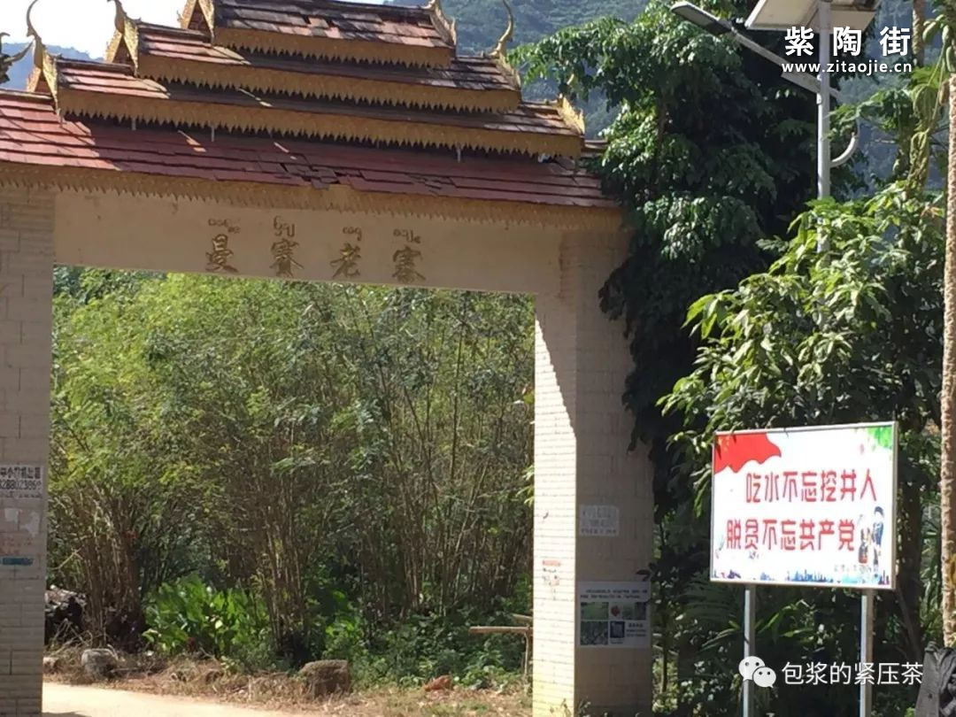 易武老字号,曼庄(曼砖)古茶林插图20