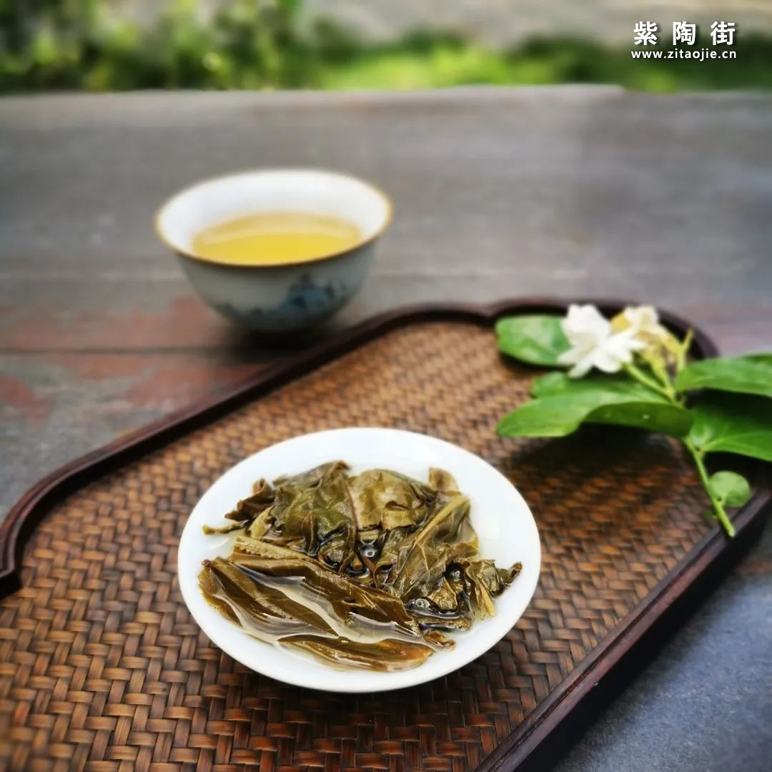 天门山普洱茶 | 解密易武特高古树插图6