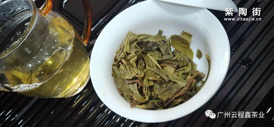 橡筋茶是什么茶?插图9