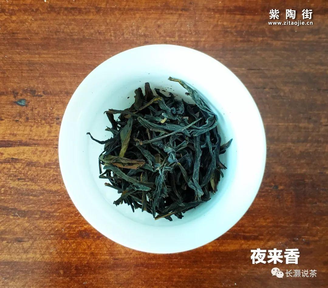 凤凰单丛茶的香气是如何产生的?插图13