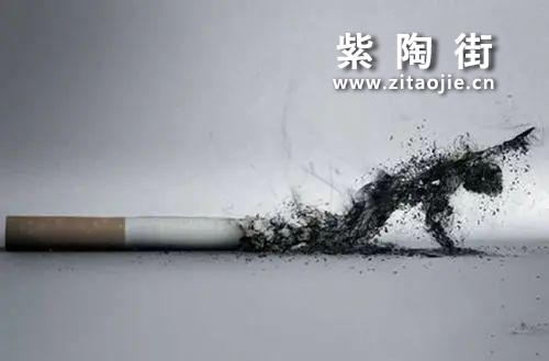 戒不了的烟!健康怎么办?——喝茶来帮你!插图5