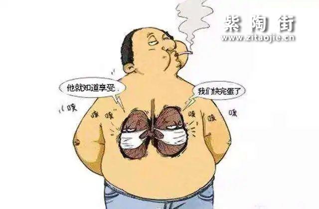 戒不了的烟!健康怎么办?——喝茶来帮你!插图7
