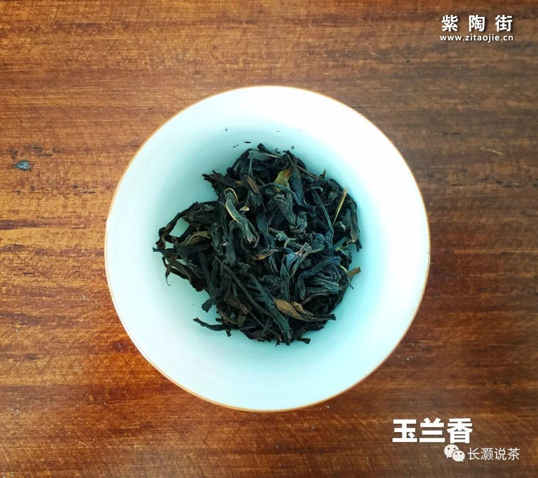 凤凰单丛茶的香气是如何产生的?插图12