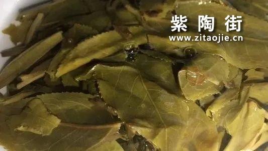 中药药性的判断与陆羽找茶的秘密,它与喝懂普洱茶有联系么?插图4