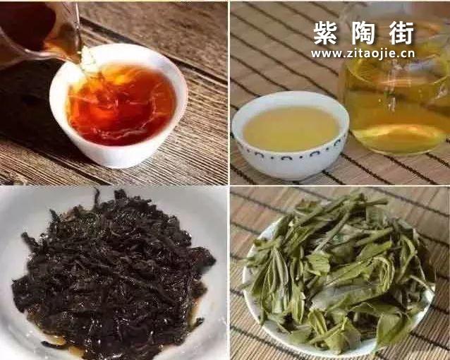 云南临沧小众茶区•梅子箐古树介绍~锅底塘!插图5