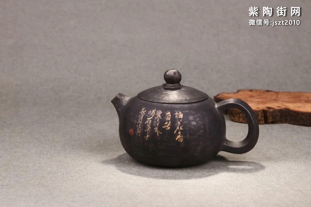 舒泛舟紫陶壶作品欣赏插图16